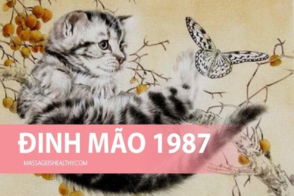Giải Đáp Tuổi Đinh Mão 1987 Mệnh Gì, Tuổi Gì Và Hợp Màu Gì?